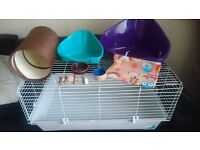 big cage & accessories & timothy rich hay & guinea pig food RRP over £200