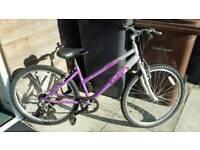 Ladies Raleigh mountain bike