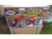 Kids peddle pirate quad bike