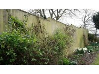 Garden fence, now dismantled, consists of feather boards 150+, rails 25+, gravel boards