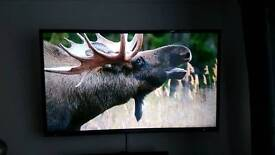 "55"" Full HD LED Seiki TV"