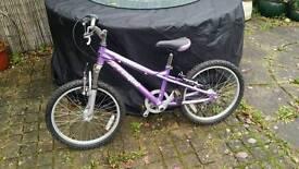 "Dawes ""Redtail"" bike"