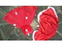 Ladybird Girls Red Christmas Fancy dress 2 Piece age 4 5 6 7 Years