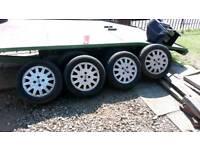 15 inch focus wheels