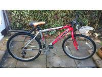 "Python Rock Mountain Bike 16"""