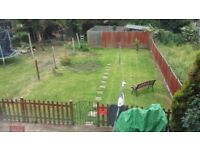 3 bedroom semi would like 2 bedroom house only