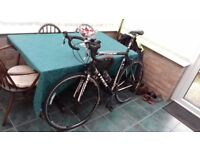 Trek Racing Bike with extras- Fantastic condition