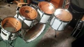 Pearl blx drums shells only.....with hard cases .