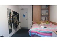 Double Bedroom right next to DMU!