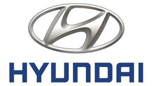 Hyundai OEM Quality Parts Bumper Fender Hood Mirror Grille Radiator Front Rear Cover Tail Fog Head Lamp Support Shock