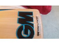 Brand new youth size 6 GM cricket bat