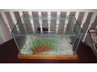 20 litre Fish tank with pebbles, top wooden lid and base wooden cover