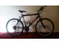 Zulu Men's Mountain Bike