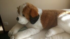 Large cuddly St Bernard puppy