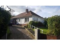 3/4 bedroom extended Bungalow, West Cross, pretty garden,2 reception rooms , large driveway £279,950