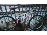 Adults Mountain Bike Great Condition