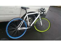 Road racer bike thin wheels speclist bike