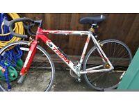 Racing type bike lightweight