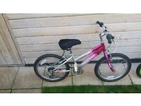 Girls Raleigh Bike 5 to 8 years old