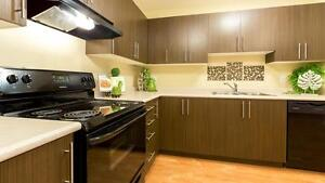 Pet friendly Two Bedroom apartment w in-suite laundry Mill Woods Edmonton Edmonton Area image 5