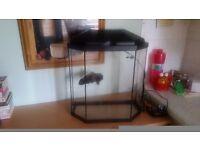 25l fish tank