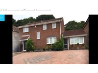Self contained one bedroom apartment £695pcm most bills included.