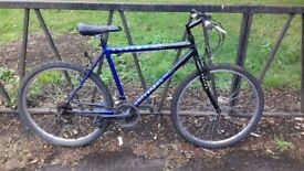 """Mountain Bike Bicycle For Sale. Fully Serviced & Guaranteed. 18 Speed. 18"""" Frame"""