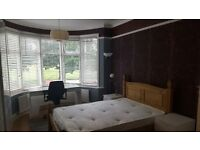 LARGE ROOM,VICTORIAN HOUSE SHARE WITH GARDEN,ALL BILLS INCLUDED.FULLY FURNISH.