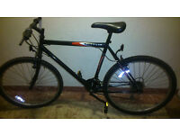 Cheap mountain bike with solid frame.