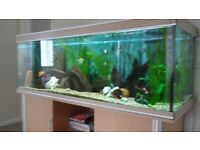LARGE FISH TANK AND UNIT FOR SALE