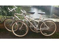 His and hers Raleigh voyager silver bikes