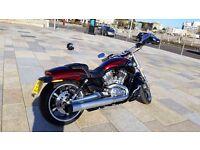 2015 (15) Harley-Davidson VRSC V-Rod Muscle, 1250 cc, 1800 miles, Excellent condition