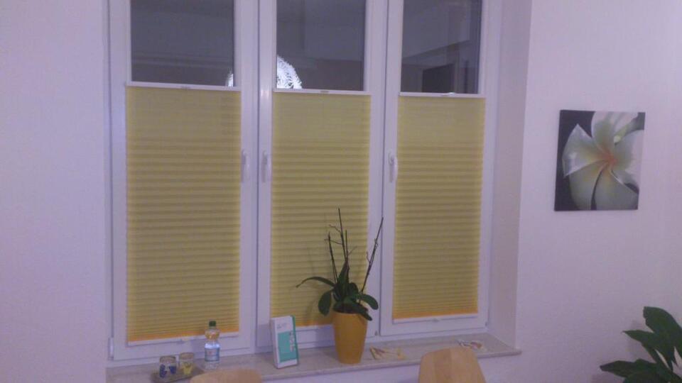 Plissee Faltstore mit Service Beratung Aufmaß und Montage in Niedersachsen - Wiesmoor