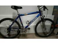 Mens / boys saracen mountain bike