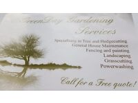 Tree surgeon/Tree and hedge cutting services