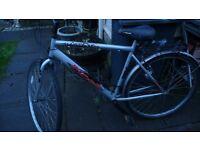 """Gents road bike (21"""" frame)"""