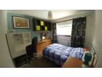 Room to rent in a shared 3 bed house