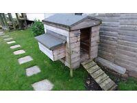 Chicken Bantam Coop Hen House