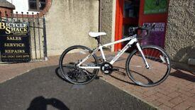 Jupiter Dolomite Racing Bicycle