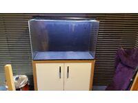 Aqua one 130l Aquarium/Fish Tank