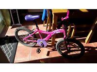 Girls Mountain bike good condition