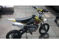Pit Bike Roadster CWPRO 125cc .Geat condition goes well. 14 inch front wheel 12 inch back