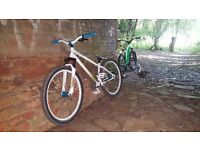 Jumpbike / Dirt jump bike specialized p1