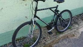 Mens Mountain Bike Raleigh Activator