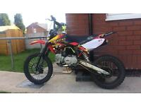 M2r km 140 mx 6 weeks old was £900