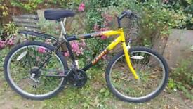 Gents Magna Threat Bike with Lock