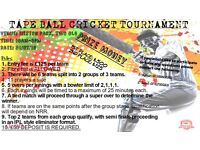 Tape Ball Cricket Tournament in Heston on the 31/07/2016