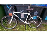 Diamond Back Ascent Mountain Bike....£35 ono