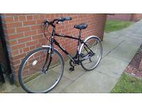 Large black hybrid bike for sale