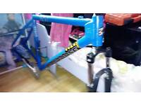 Mongoose flat back montain bike frame